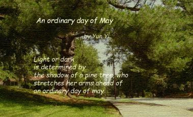 poem-May